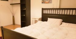 INVITING FULLY FURNISHED 2 ROOM APARTMENT IN LEV HAIR AREA PFN # STR